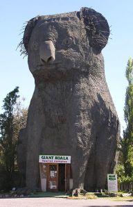 385px-Giant_Koala